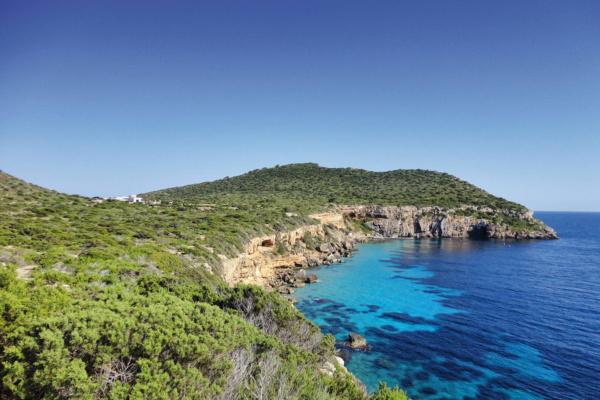 600.000qm schönste Natur und das nur 900m von Ibiza entfernt