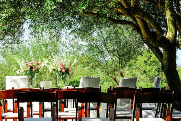 Der alte Olivenbaum im Garten: Eine sehr beliebte Zeremoniestätte, ganz egal ob stehend oder sitzend!
