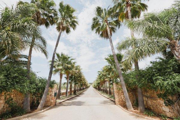 Lasst euch von der Auffahrt unserer Palma Vista umarmen...Hammer Auftritt!