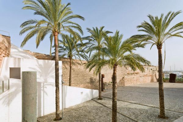 Sonne, Palmen, Meer! Unsere Finca Arte bietet Euch wunderschöne Rahmenbedingungen für ein gelungenes Event