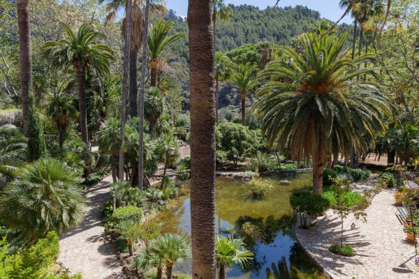 Wasserspiele, Palmen, unzählige Grünflächen und kleine verspielte Naturstätten...wer die Wahl hat, hat die Qual :)