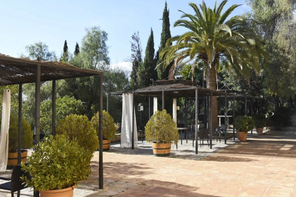 Chillen im Palmengarten der Finca El Patio