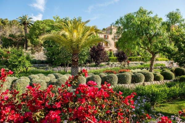 Wunderschöner Vorgarten